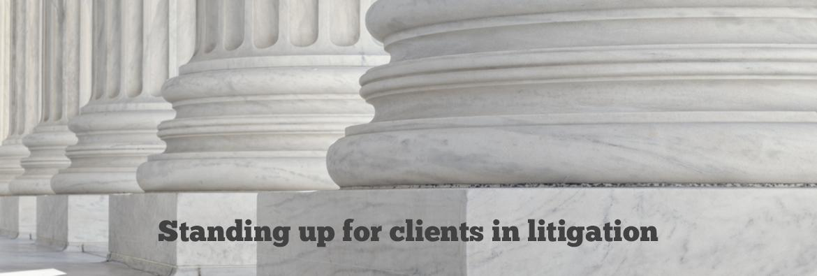 Standing up for clients in litigation.